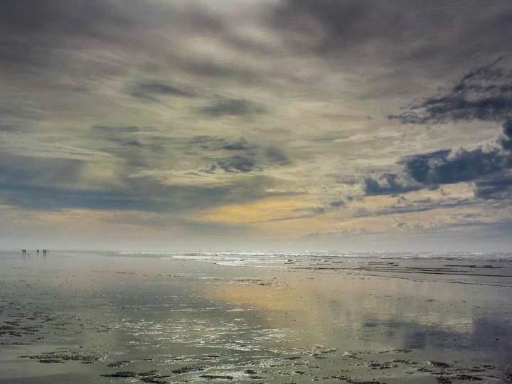 2017 Seabreeze Walking Festival Ocean Shores Feb 18-20, 2017
