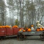 Oct 28  Trick or Treat at Remlinger Farm  5K/10K/13K