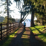 Jan 27, 2018  Bellevue – Roller Coaster Trek