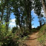 Aug 18 – Issaquah/Hobart – Taylor Mt Explore the Trails