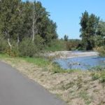 November 23 (Friday) Opt Outside on the Sumner Link Trail