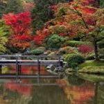 October 5   Kubota Garden and Much More